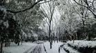 公園004.JPG