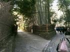 野宮神社0001-1.jpg